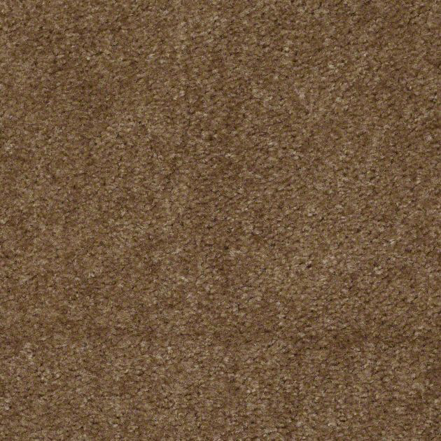 Charred Hickory - 25 oz. carpet
